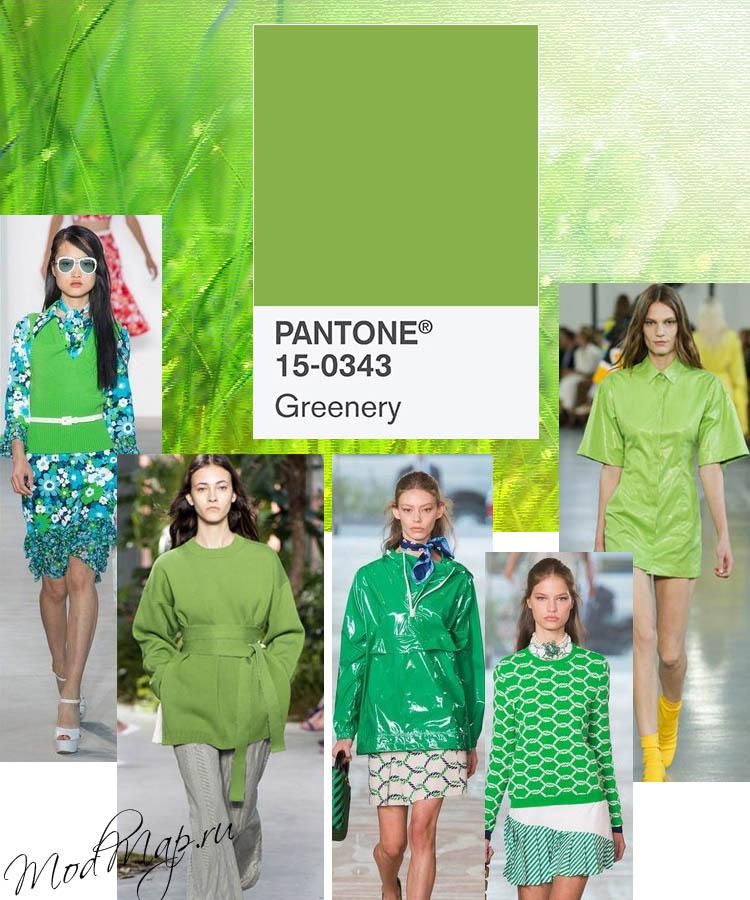 зеленый модный цвет